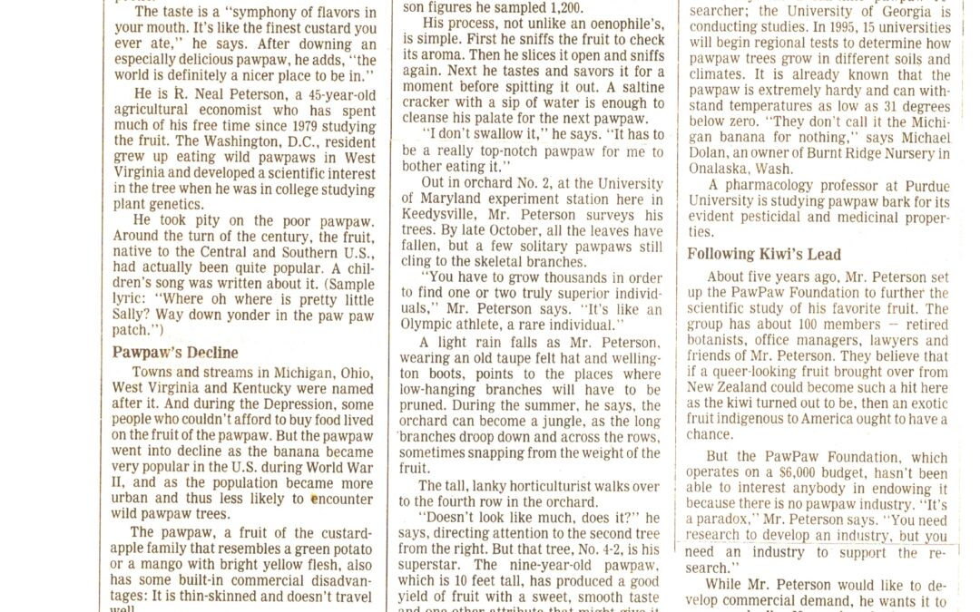 Wall Street Journal 1993: Neal Peterson's Goal is to Domesticate the Wild Pawpaw